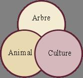 L'agroforesterie appliquée à la viticulture bio