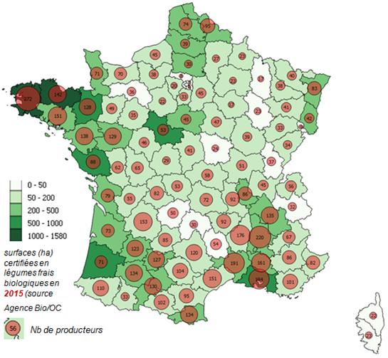 Des Legumes Bio Partout En France