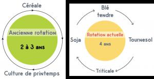 Ancienne rotation : 2 à 3 ans : 1 céréale ; 1 culture de printemps Rotation actuelle : 4 ans : 1 blé tendre ; 1 Tournesol ; 1 triticale ; 1 Soja